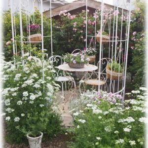 バーベナ ハスタータ セリーヌフォレスティエ 春の庭