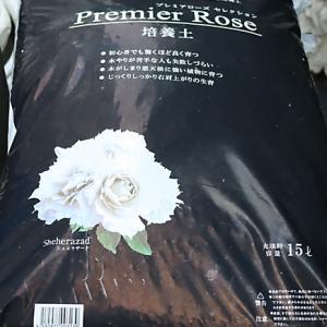 バラの家 培養土とプレミアローズ培養土の感想