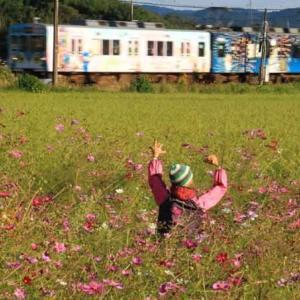 秋の伊賀鉄道(三重県)