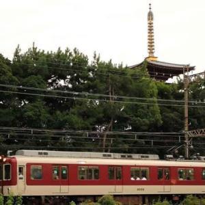 大和路を行く 薬師寺西塔 ・ 近鉄橿原線(奈良県)