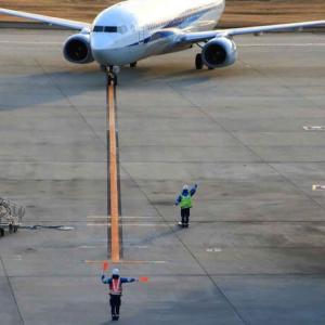 到着便の誘導 ・ 大阪国際空港