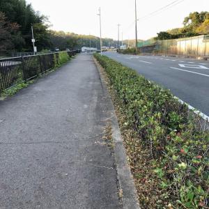 安心  安全  の  通学路