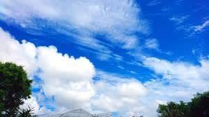 コロナ騒動の中での「立夏」到来・・・「種まきの時期」も折り返し地点です。