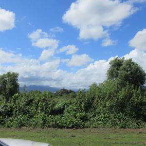今日(09/08日曜)のRCクラブ飛行場風景