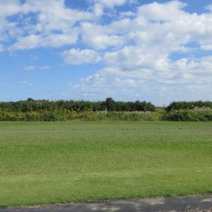 昨日(10/16水)のRCクラブ飛行場風景