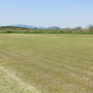 (R2/4/29)のRCクラブ飛行場の雑草の状態