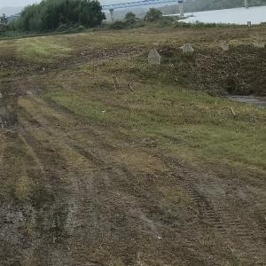 水上機飛行場雑草刈り