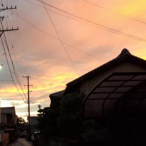 夕焼けと虹