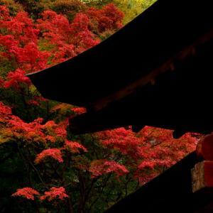 談山神社にて つづき