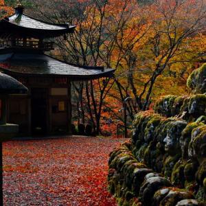 愛宕念仏寺にて