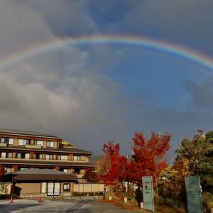 1日に2回の虹が・・・