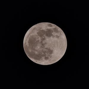 昨日は満月 ビーバームーン