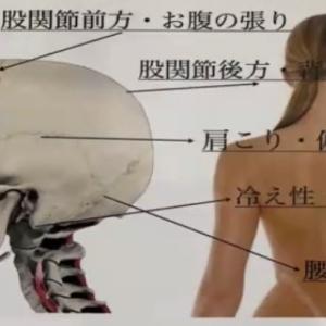 10分で頭蓋骨スパ?!