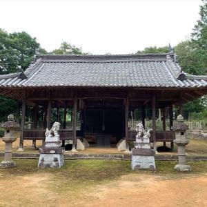 新聞に出ていたキヌガサタケの出る神社を探す      2021.07.17. (3)