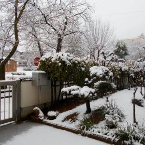 にしざわ貯金箱かん つれづれ雑記(この冬一番の雪降り)