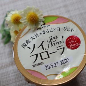 国産大豆でできたヨーグルト ソイフローラ