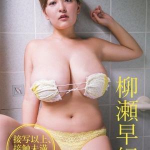 「【VR】接写以上、接触未満 柳瀬早紀~お風呂編~」の作品紹介記事