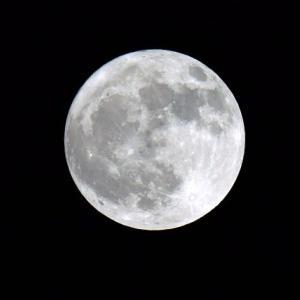 まん丸の満月