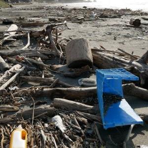 海洋汚染の現場