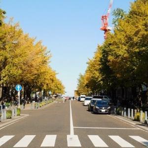 #6887 日本大通りで秋を感じて