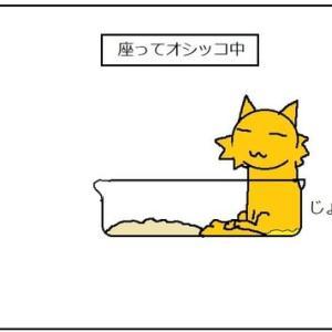 猫砂を早く片付けて欲しい派
