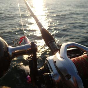 釣果は貧果、先週末のショアジギング