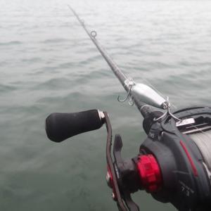 雨の釣りとネタルアー