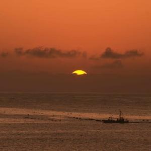 まるで「太陽にほえろ!」のオープニングのような朝