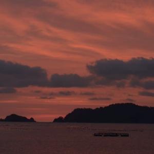 夜明け前の空の色が好き。