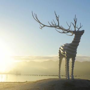 まるで雲海の中にいるような白鹿