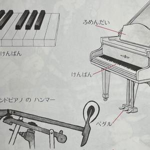 20歳になってもピアノやっていいの?