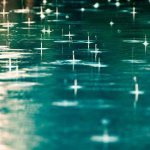 さらばダニィ。梅雨から増殖するダニたちw