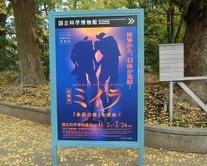 東京の国立科学博物館で『特別展 ミイラ ~「永遠の命」を求めて』