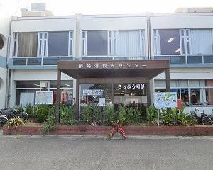 「タコ」をみて「タコ」を買って「タコ」を食べて「タコ」になった日間賀島での一日…