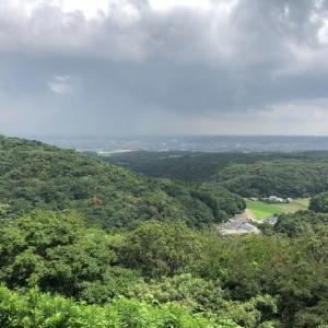 三船山のヤマユリ