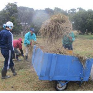 堆肥作りと収穫作業