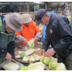 白菜と大根漬け