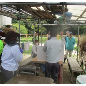 トマト・ナス等の夏野菜植付けと竹の子掘り