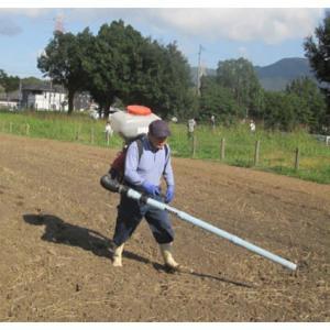 レンゲの種まきと野菜の追肥