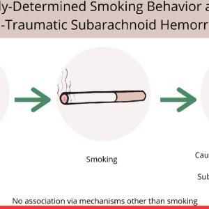 Stroke誌:喫煙とくも膜下出血の「因果関係」