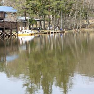 美女高原の池