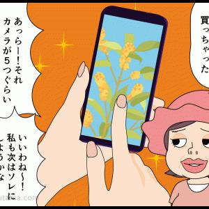 オバちゃんたちと登山(09)カメラ
