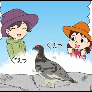 愛しい雷鳥