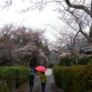 2020春・九州二百名山&三百名山登山ツアー:2日目湯布院観光