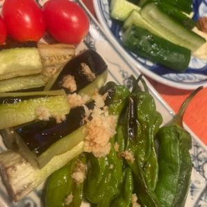 【夏野菜の収穫】✨