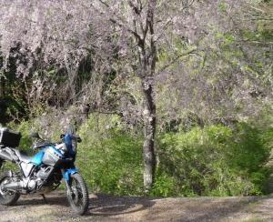 自分が実際にバイクメンテンスで役に立ったもの勝手にランキング