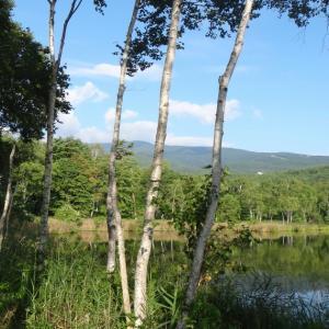 バラギ高原キャンプ場(群馬県嬬恋村 8月下旬)