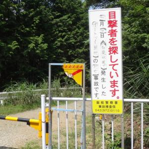 さようなら大名栗林道(埼玉県飯能市)