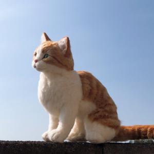 ♪茶白猫ちゃんが完成しました、あっ髭がない