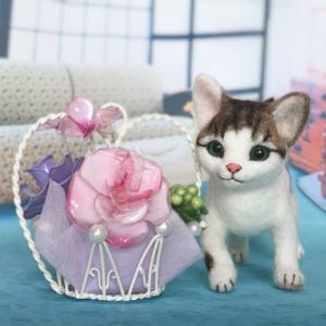 ♪キジ白猫が誕生しました
